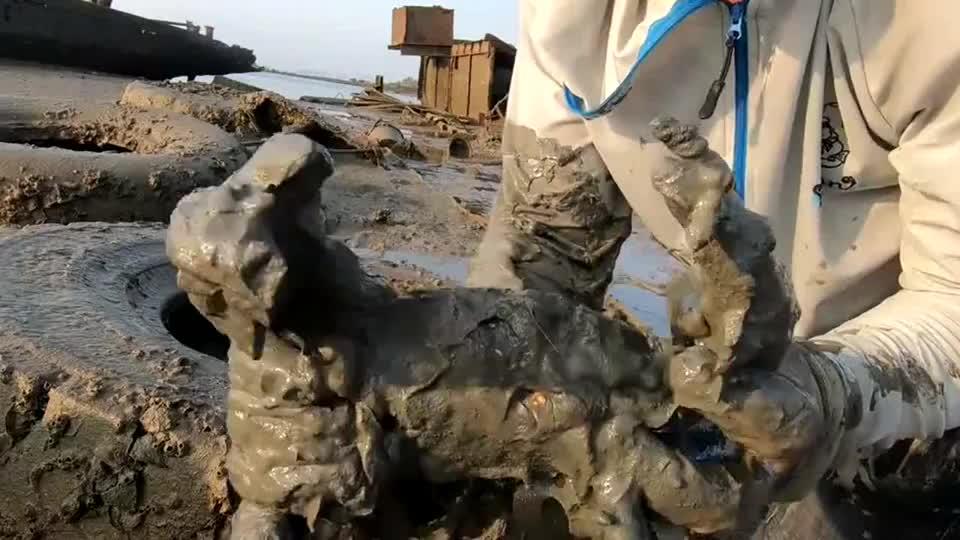 海钓抓鱼发财了,在海滩上发现条沉船,里面全是值钱货