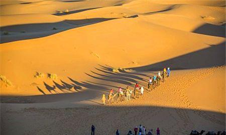 沙漠上有的是旋风,打着转在沙漠上飞跑