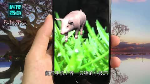 """手机屏幕设置一只""""猪"""",有人动你微信,猪就跑出来大声""""叫"""""""