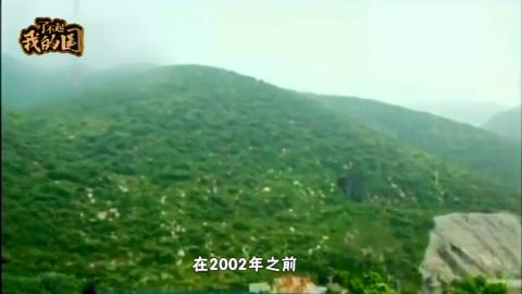 1966年中国启动一项大工程 耗资7个亿 动用十几万军人 却离奇被弃