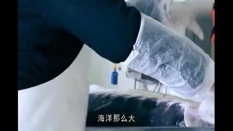 鱼子酱凭什么这么贵?看完生产过程一点也不抱怨了