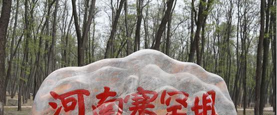 """""""河南塞罕坝""""——数万亩平原林海, 周末自驾好去处"""