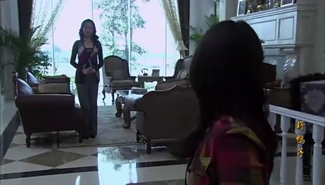 野鸭子找到自己董事长亲妈,却接受不了赵先生,董事长亲妈急了