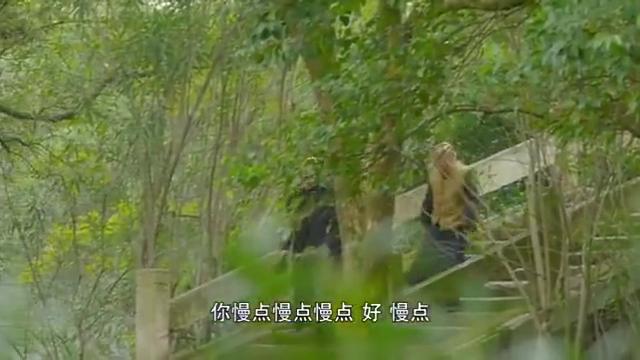 心如铁:燕飞向森木汇报,把龙马和柳爷暂时安顿在灵延寺