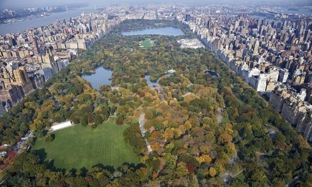 公园里草坪上远远望着曼哈顿的高楼大厦,彷佛是两个世界般惊愕