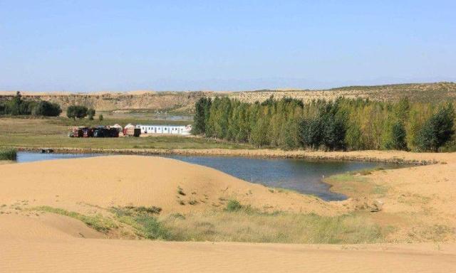 这地方引黄河水治沙成功,如今居民收入上百万,新疆朋友很羡慕了