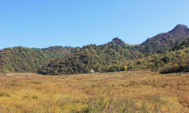 重庆黄安坝:大巴山腹地的牧场,彩林处处、衰草连天,秋韵悠长