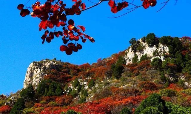 山东最好看的红叶在哪里?临朐的石门坊告诉你