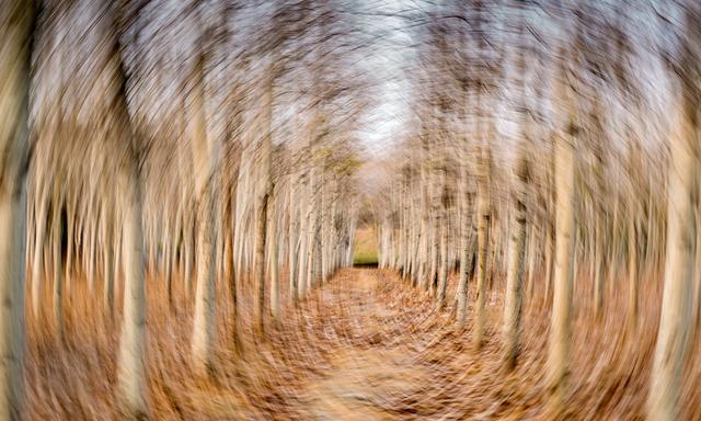 张跃摄影训练:抖动你的相机,你也能拍出最美的线条