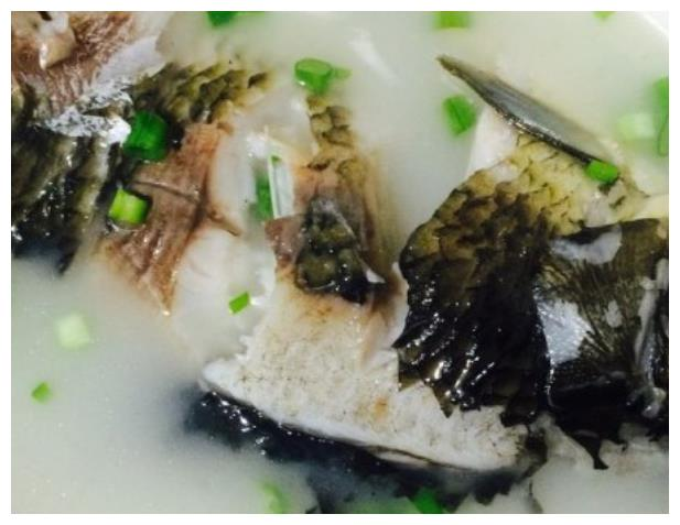 秘制鲫鱼汤,就学这一招,鱼汤鲜浓美味,鲜嫩不腥人人夸