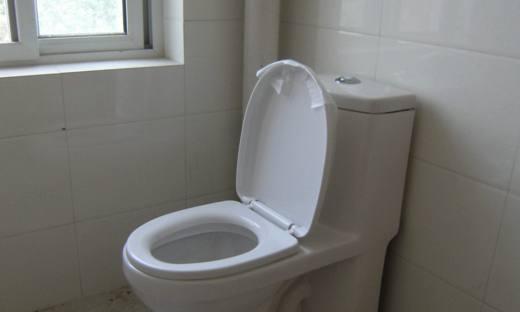 蹲便器or马桶,哪个更适合家用,看了你就知道