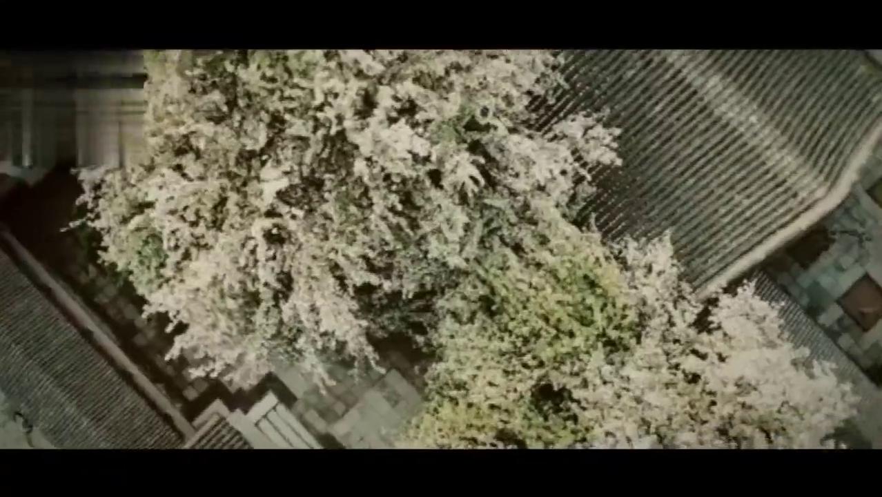 【小戏骨之红楼梦群像】杀伐 ,不同的演技不同的态度
