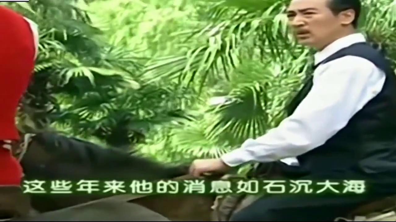 依萍向陆振华道歉,陆振华:看样子我们父女之间总算有些进步了!