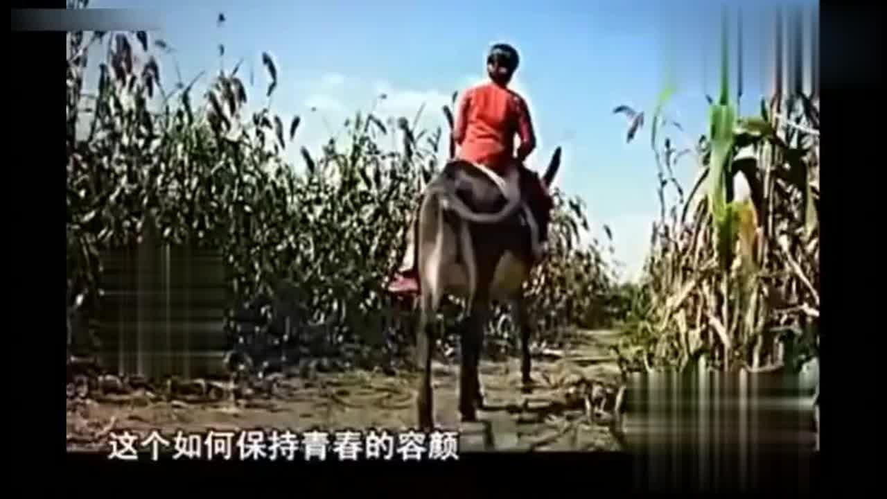 老梁她才是娱乐圈里真正的不老女神 赵雅芝杨钰莹都不算啥