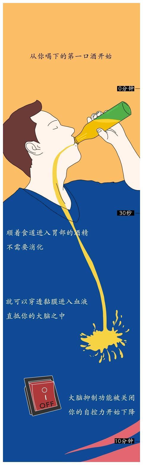 """""""酒精进入体内的24小时!""""(漫画)"""