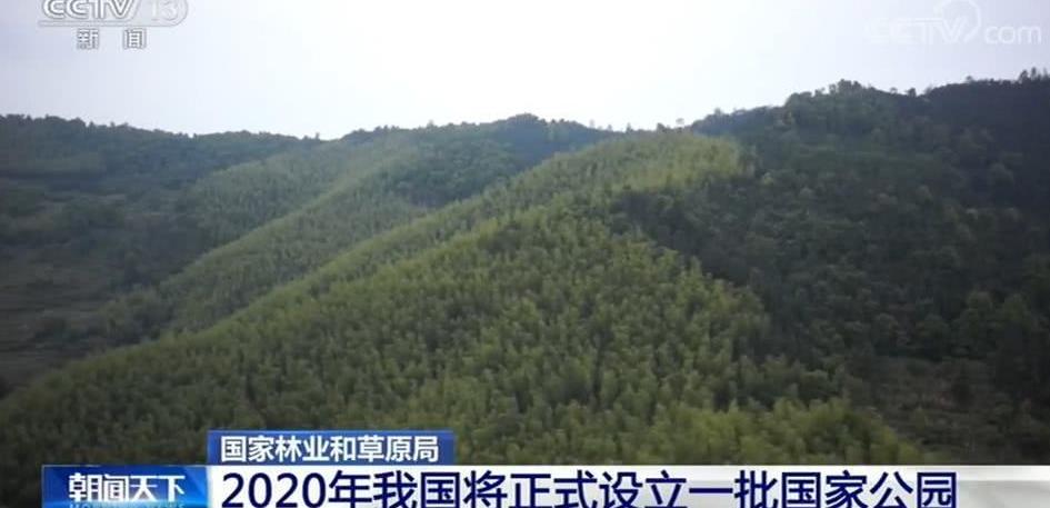 2020年,中国第一个国家公园终于要来了!