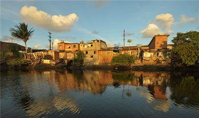 巴西,一片不知不扣的乐土,富饶的热带雨林
