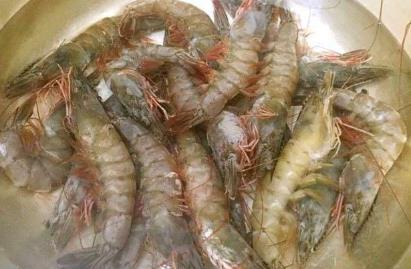 """做虾,""""白灼""""和""""水煮""""区别很大!掌握这一招,肉质鲜嫩没腥味"""