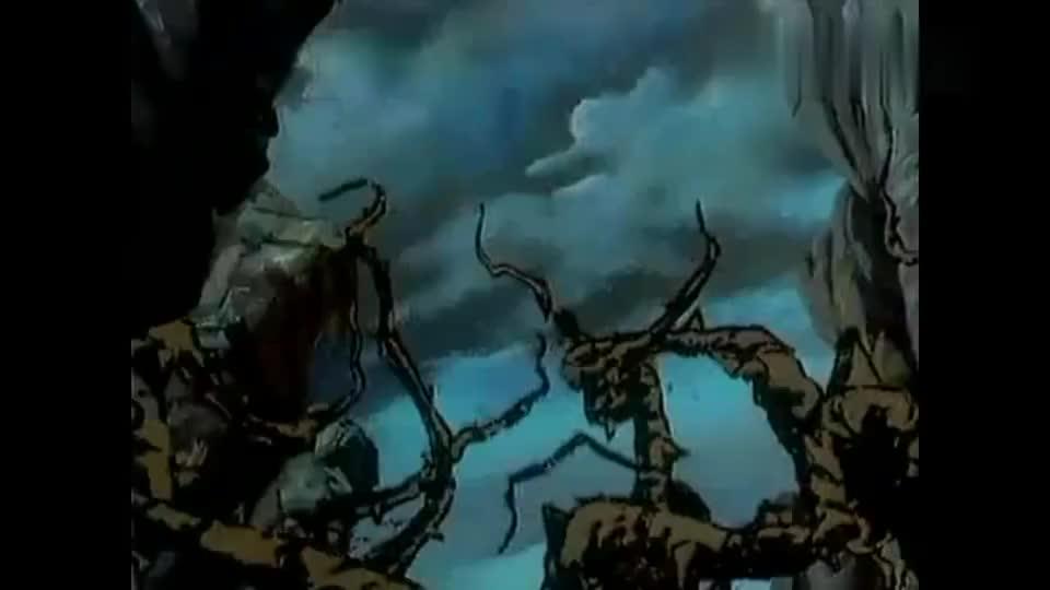 狮子王辛巴终于杀掉了老虎大仇得报