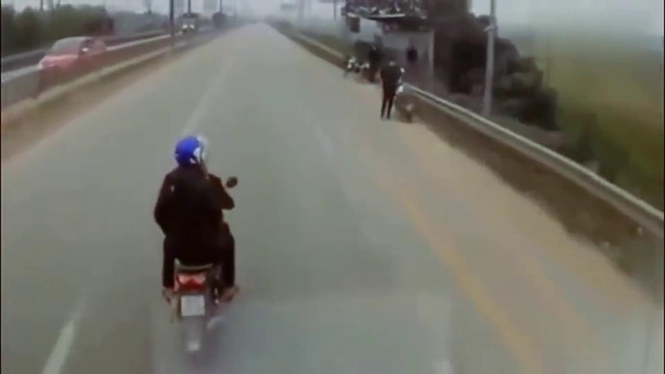 摩托车花式挑衅小轿车,要不是监控,都不知道他有多作死