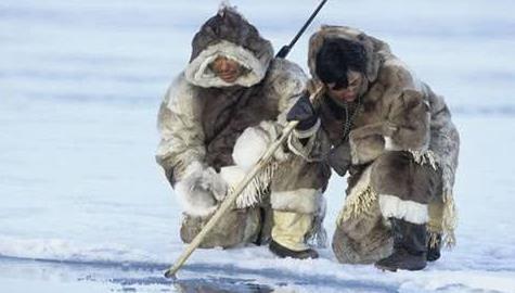 """北极圈的""""好客""""民族,白天捕鱼打猎吃生肉,夜晚竟如此招待游客"""