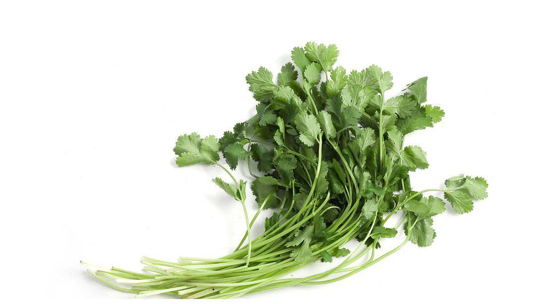 此菜营养丰富,常吃能刺激汗腺分泌,和胃调中,并帮助治疗感冒