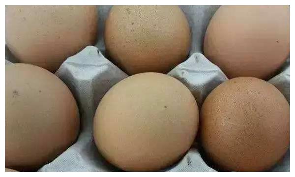 活珠子怎么吃?活珠子和毛鸡蛋的区别在哪?