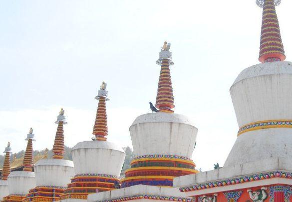 塔尔寺位于西宁湟中县,能感受到浓郁的宗教氛围,旅游目的地之一