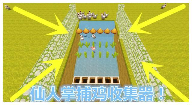 迷你世界:仙人掌捕鸡收集器,30小鸡乖乖被捕捉,大神天天吃鸡腿