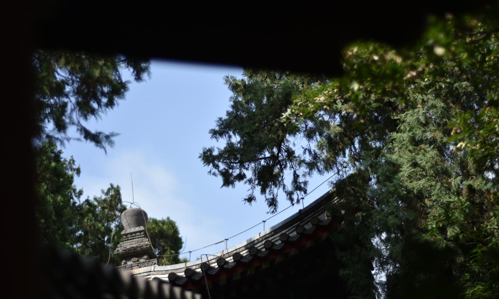 最美京秋,北京颐和园一天实用游玩攻略