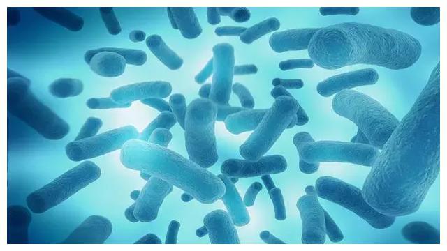 母婴健康系列:益生菌可优化婴幼儿肠道菌群,促进婴幼儿健康吗?