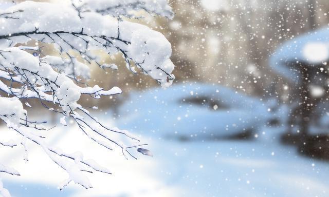 在洁白静谧的雪乡,寻找玩雪赏雪的最佳方式