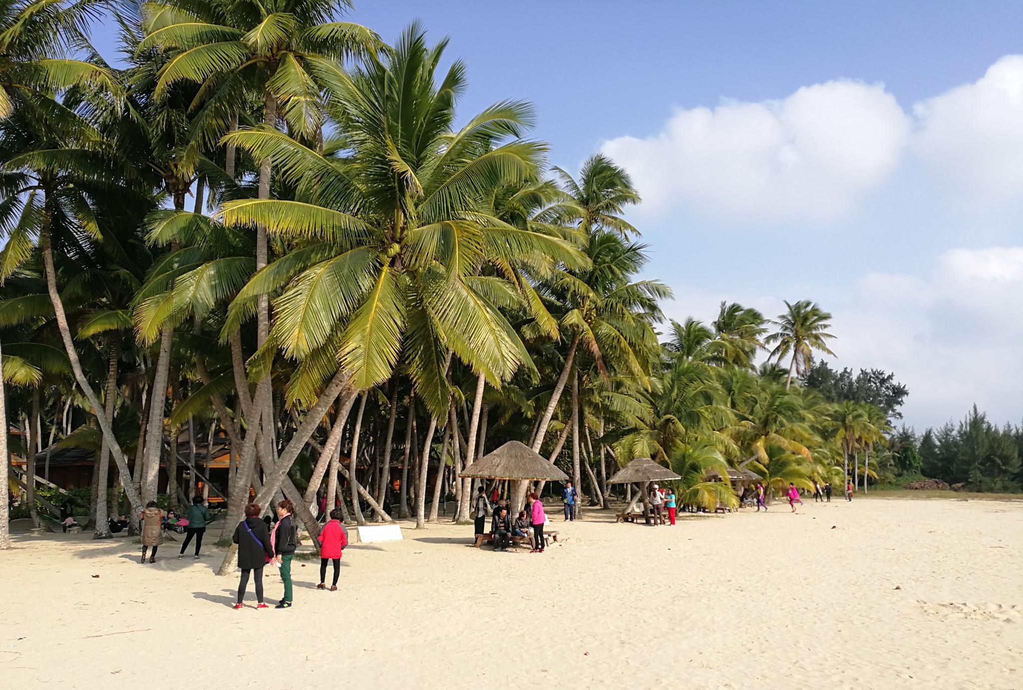 海南岛风光:椰风海韵、海天一色,微风拂过飘来了阵阵花香