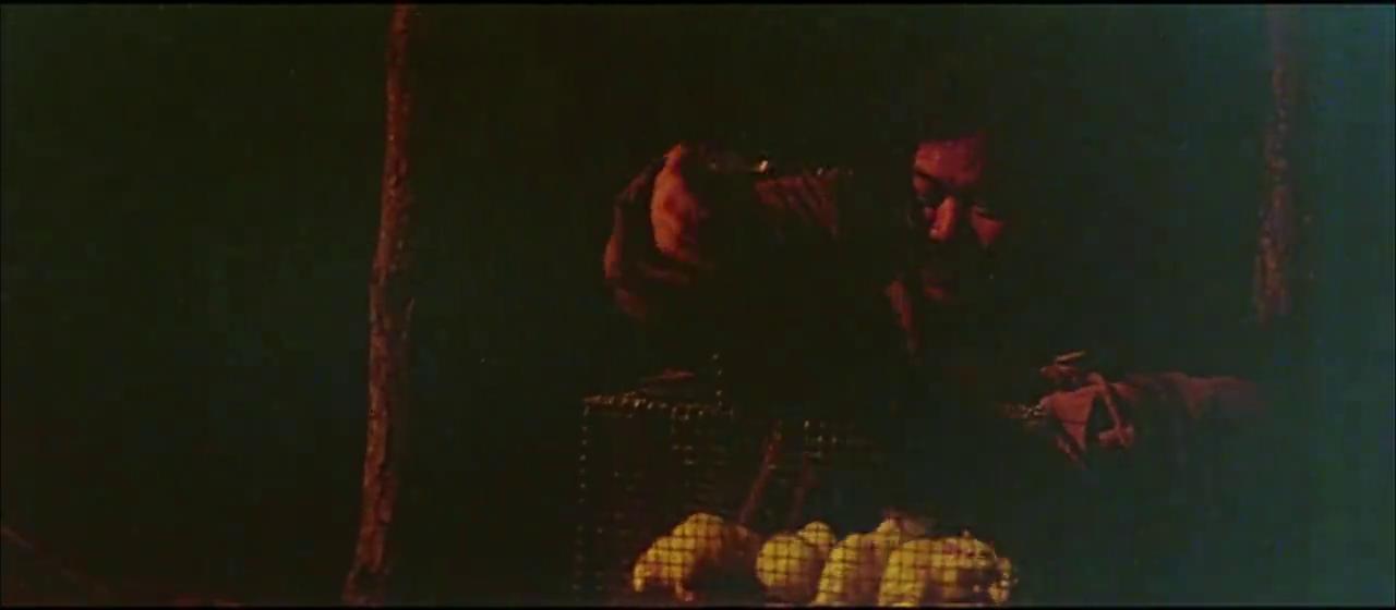 樊梅生喝起了小酒,他不光自己喝给他带的老鼠也倒上了