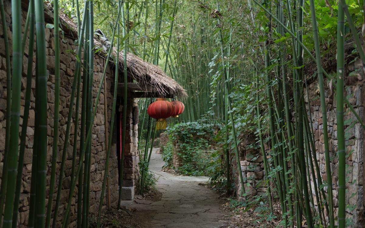 山东沂蒙山中有座古村,竹林遍地,已有400多年历史