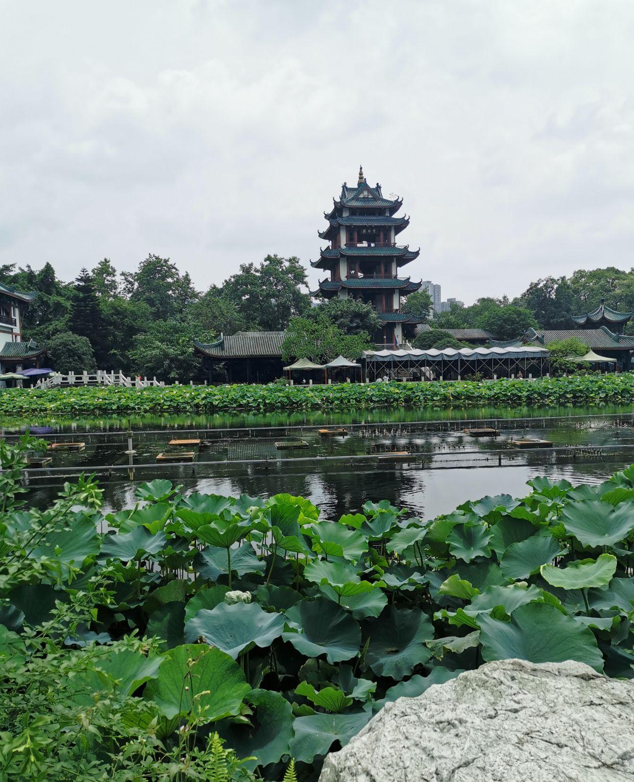 新都桂湖公园 桂湖公园 成都市新都区桂湖