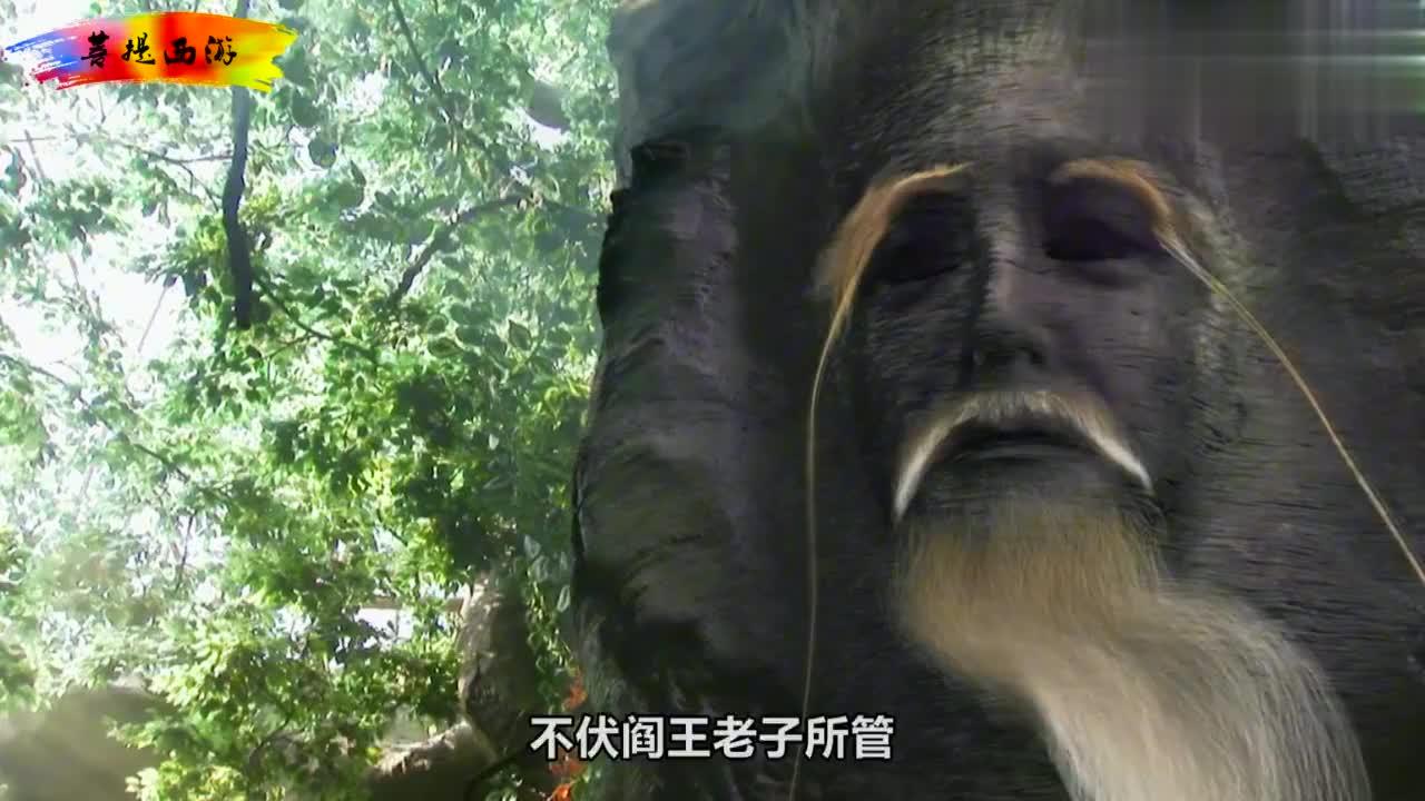混世神猴之一的通臂猿猴就隐藏在花果山?为何他知道菩提的底细