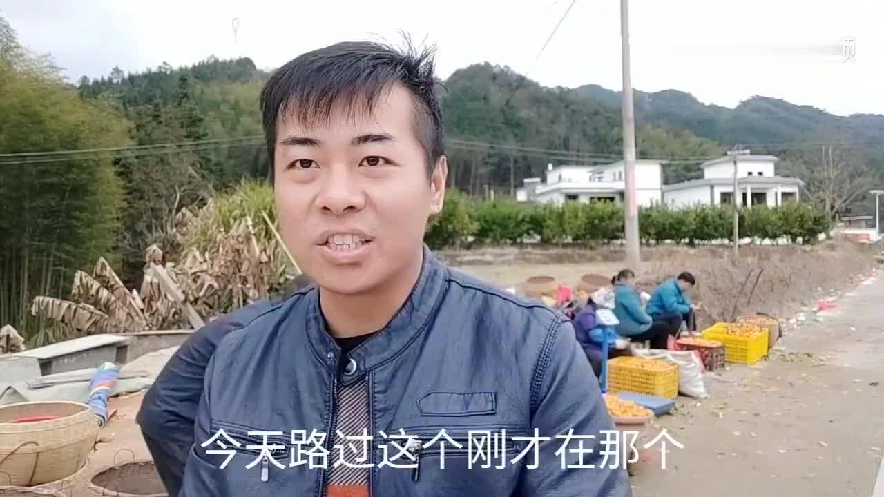 两块钱一斤的砂糖橘炒饭买了60斤老板是仁化县橘子大王