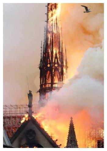 六小龄童杨祐宁等明星发文,叹息巴黎圣母院大火,陶虹言论引争议