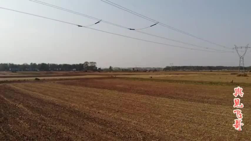 小伙拍河南平舆风景美丽的村庄肥沃的土地有喜欢的吗