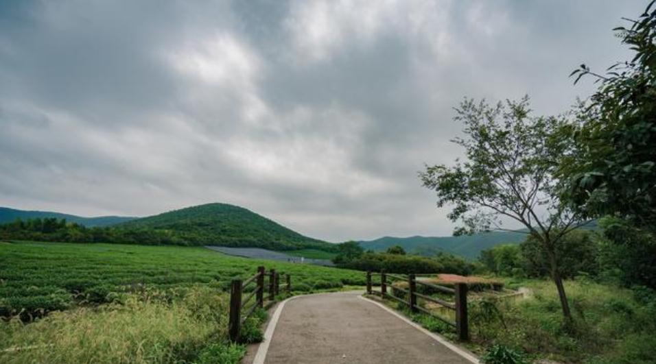 """国内旅游无锡""""龙池山""""——茶洲叠翠的灵秀胜地"""