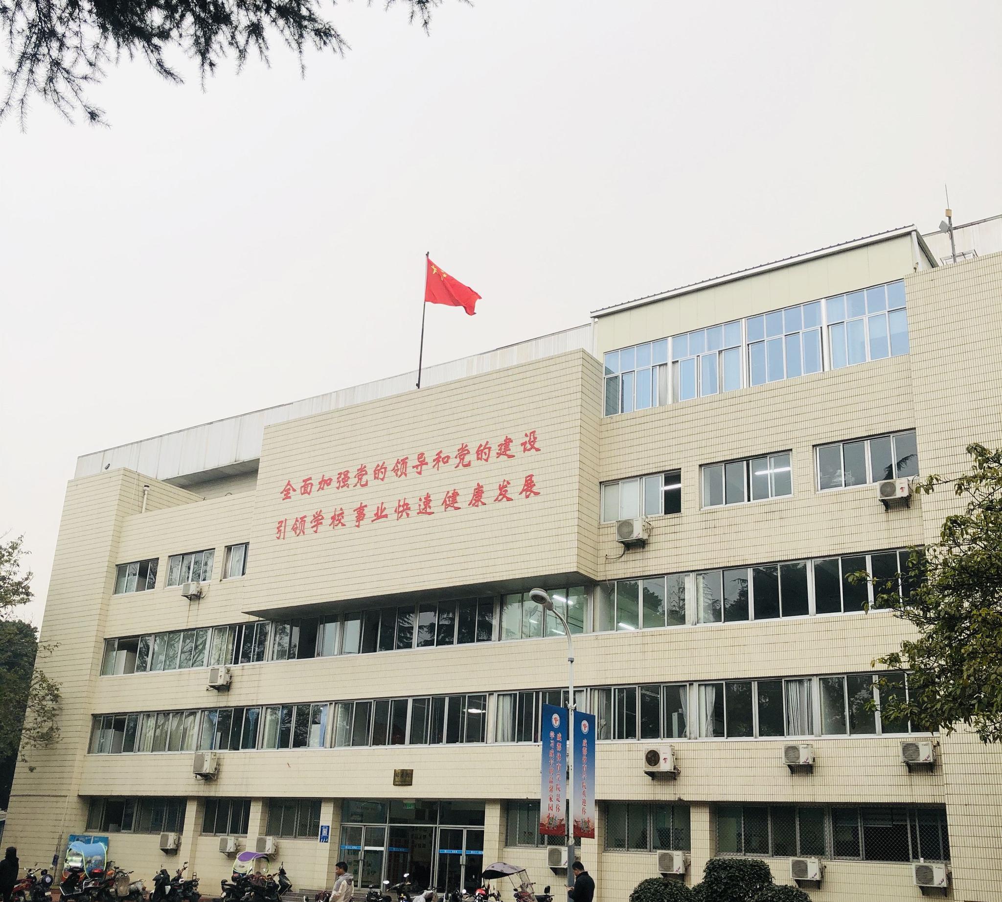 2020四川艺术类本科提前批录取结束 录取人数较去年增加19.56