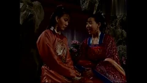 小丫鬟跟王妃说自己被皇子看上,曾宝仪赶紧劝她快点嫁
