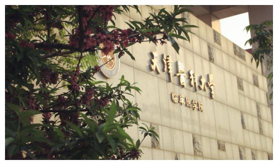 2019天津专升本升本院校介绍:天津医科大学临床医学院