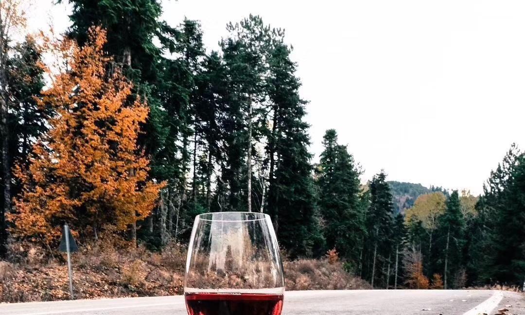 有苦味的葡萄酒是不是坏了?