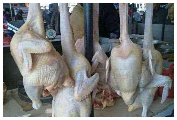 """为啥菜市场上的鸡爪鸡翅,供货量很稳定呢?大妈道出""""实情""""!"""