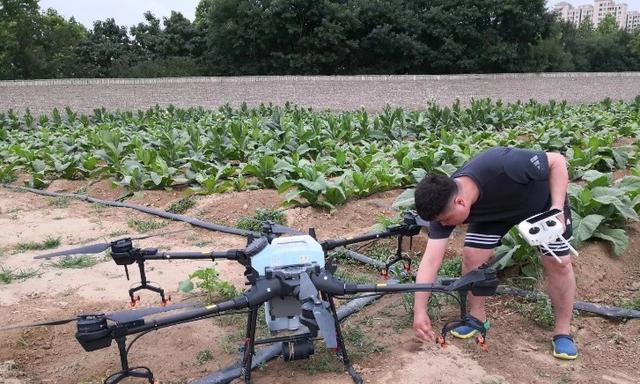 河南农大烟草研究生社会实践:科技给农业播撒绿色希望