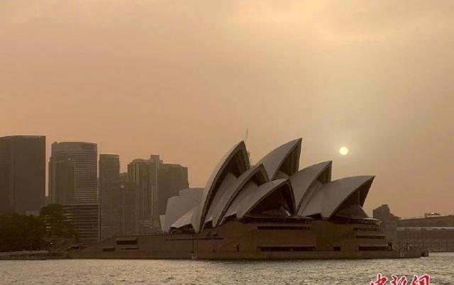 悉尼面临灾难级火灾风险!澳森林大火逼近悉尼城区