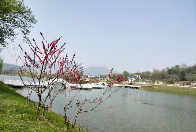 游览 安徽省 铜陵市 凤凰山景区