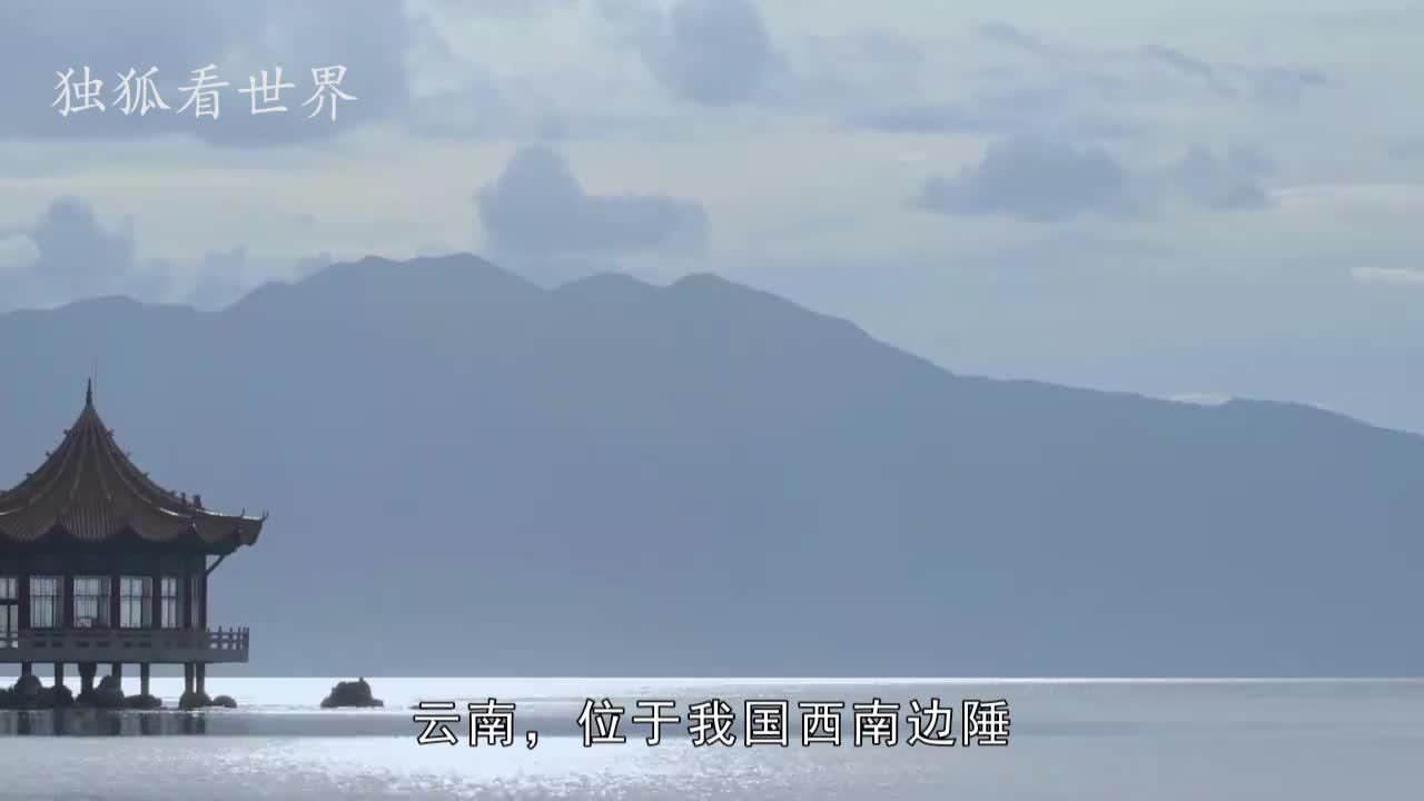 外来物种入侵抚仙湖,形似鳄鱼,生性凶狠还会攻击人